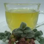 To θεραπευτικό φυτό Δίκταμνο ή αλλιώς… Έρωντας!