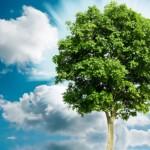 Παγκόσμια Hμέρα της Γης: Υπάρχει λύση για έναν καλύτερο πλανήτη;