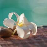 Δυσάρεστες οσμές; 5 τρόποι για να τις αποφύγουμε με φυσικό τρόπο!