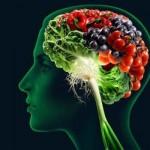 Διατροφή και πνευματική υγεία: Πώς οι τροφές επηρεάζουν την ανάπτυξη και λειτουργία του εγκεφάλου