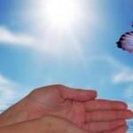 """15 πράγματα που πρέπει να """"εγκαταλείψετε"""" για να είσαστε ευτυχισμένοι!"""