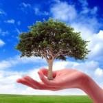 Η προστασία του περιβάλλοντος, ευθύνη όλων μας: 40 δράσεις σωτηρίας!