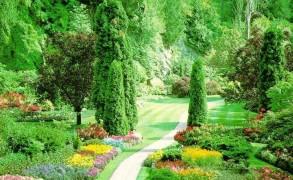 «Όπου υπάρχει θέληση, υπάρχει δρόμος!»
