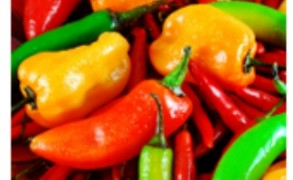 Τέσσερα τρόφιμα που τονώνουν το μεταβολισμό και τις νοητικές μας λειτουργίες