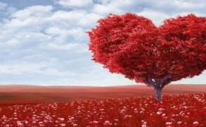 Ο πρώτος μας έρωτας γιορτάζει στις 14 Φεβρουαρίου