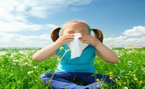 Πώς να αντιμετωπίσετε αποτελεσματικά τις αλλεργίες: 5+1 φυσικοί τρόποι