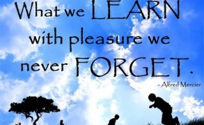 """What we learn with pleasure we never forget"""