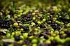 olives_0