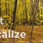 Φθινοπωρινό  Yoga & Detox Retreat με τον Κωνσταντίνο Χαραντινιώτη