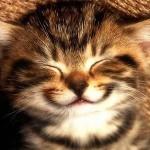 Δεν σταματάς να γελάς…