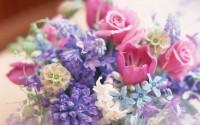 Flowers-Pastel-Colours-HD-Wallpaper