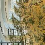 «Ψηλά, Κήπος»: Εγκατάσταση της Rebecca Louise Law