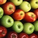 Μήλα: το πολύτιμο φρούτο του χειμώνα και πώς (αλλιώς) να το απολαύσουμε!