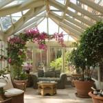 5 οφέλη από τα φυτά εσωτερικού χώρου
