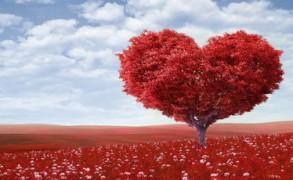 Τελειώνει η αγάπη;