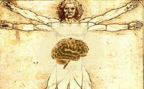 Πως η σύνδεση εγκεφάλου και εντέρου επηρεάζει την ψυχική ευεξία