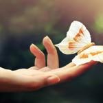 10 τρόποι να ζήσετε με Αρμονία και Ισορροπία