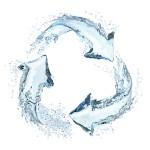 Μην ξοδεύετε το νερό. Ανακυκλώστε το!
