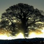5 σύντομα μαθήματα που μπορούν να επιδράσουν στη ζωή μας