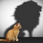 Πόσο σημαντική είναι και πώς χτίζεται η αυτοεκτίμηση;