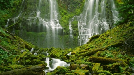 water nature trees waterfalls 1920x1080 wallpaper_www.wall321.com_7