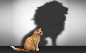Τα χαρακτηριστικά του ατόμου που έχει αυτοεκτίμηση