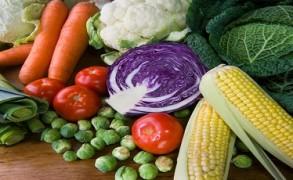 Φυτοφαγία. Η εναλλακτική νηστεία