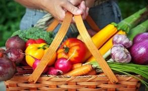 Χορτοφαγία και Αναιμία…ΤΕΛΟΣ