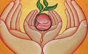 Oι καλύτερες βιταμίνες για τη γονιμότητα ανδρών και γυναικών