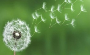 5 Λόγοι Για Να Φέρετε Την Ενσυνειδητότητα Στο Σώμα