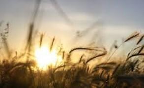 Πνευματική έλξη: 10 βήματα για να γίνετε μαγνήτης της επιτυχίας
