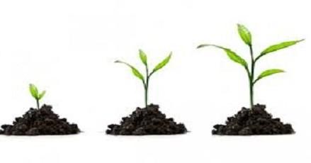 7 Θεμελιώδεις Αλήθειες για την Προσωπική Ανάπτυξη