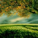 5 ασπίδες για να προστατεύσετε την θετική σας ενέργεια