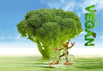 broccoli_healthy-diet_healthboutique